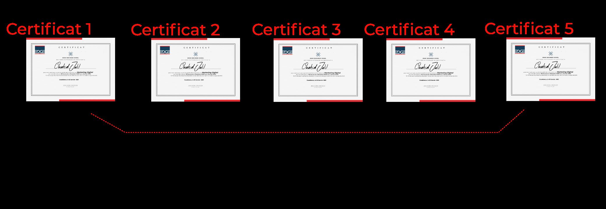 certificats professionnels
